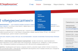 amurkonsalting.ru